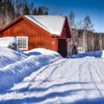 Rally Sweden 2019 ©MSport (20)
