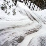 Rally Sweden 2019 ©MSport (9)