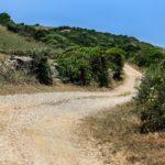Rally Italia Sardegna 2019 - Gallery ©MSport (3)